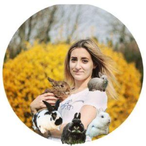 Yokalaska - Félinacs, salon du bien-être animal à Nantes