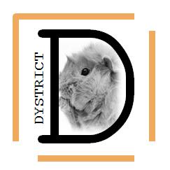 Les chons du Dystrict